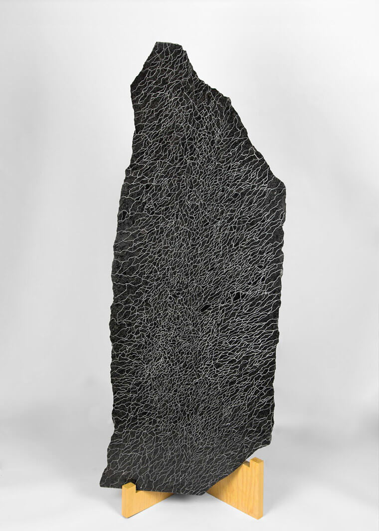 Línea infinita, Paula Cortazar