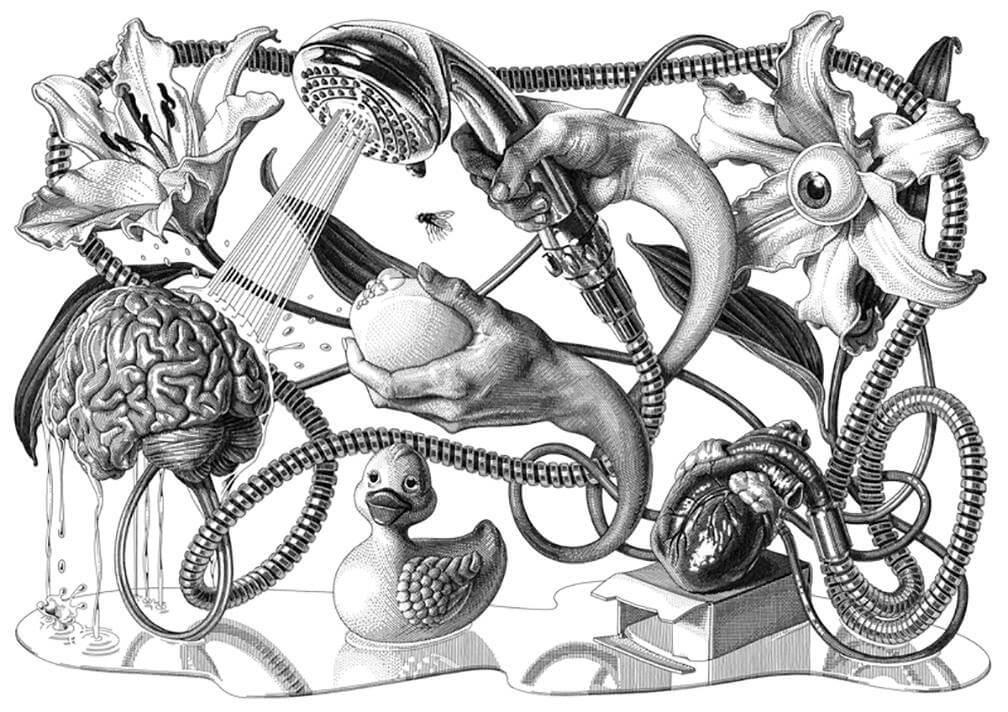 Olivia Knapp, Apócrifa Art Magazine