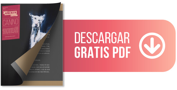 Revista de arte, versión PDF