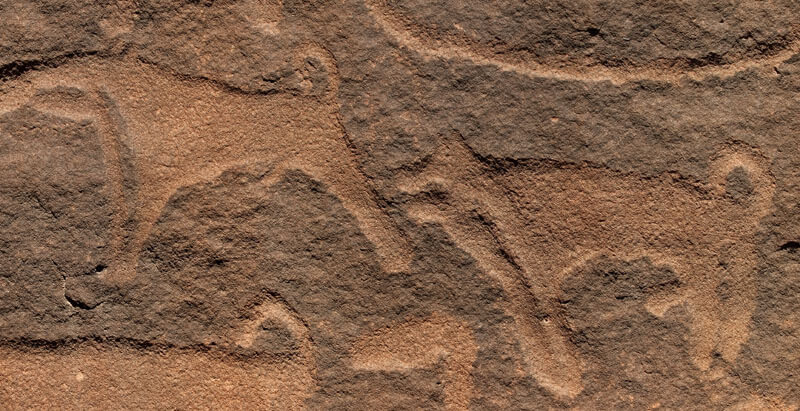 Canis lipus familiaris, Petroglifos Shuwaymis