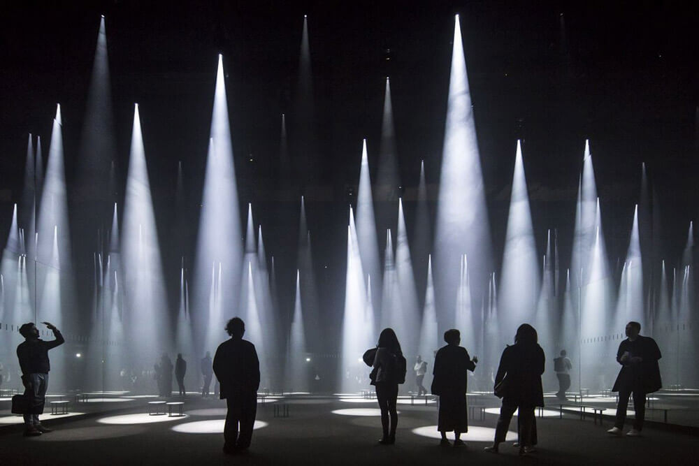El silencio, Forest of Light