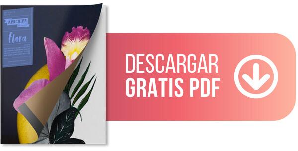 Revista de arte, versión PDF.