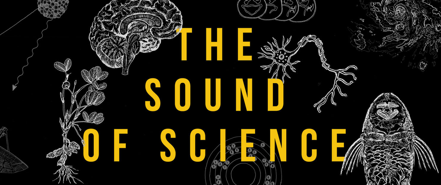 The sound of silence - agenda cultural